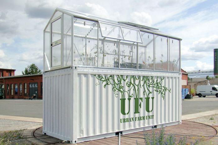 Идеи бизнеса: переоборудование контейнеров в теплицы